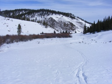 My ski tracks on Long Branch above West Fork