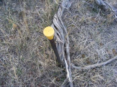 A survey marker in Disappointment Draw