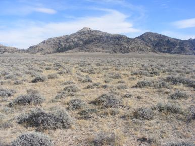 A shoulder of Bill's Peak in Lankin Dome Wilderness Study Area