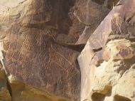 Multitude of petroglyphs at Legend Rock