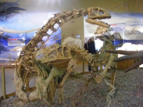 Dinosaur assemblage at the Wyoming Dinosaur Center in Thermopolis, Wyoming