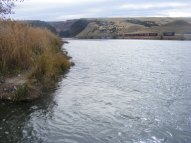 The Bighorn River at the Wedding of the Waters