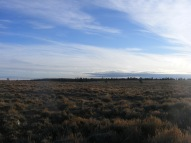 Sagebrush steppe on Green Mountain, aptly named Sagebrush Park