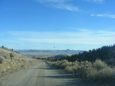 Looking out at the Granite Mountains from Bureau of Land Management Road 2411