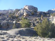Well weathered granite of the Granite Mountains