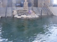 Hobo Hot Springs in Saratoga, Wyoming
