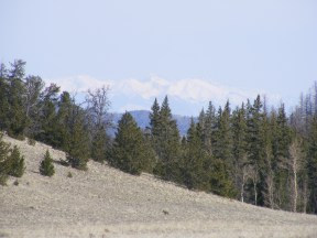 The distant Sangre de Cristo Mountains seen from Indian Park