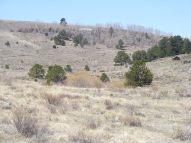 Aspen on Promontory Divide