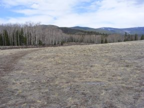 Open grassland, aspen forest and mixed conifers in the Cochetopa HIlls