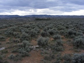 Clouds over the sagebrush steppe