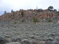 An outcropping of weathered granite