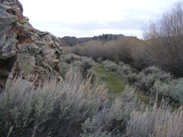 Sagebrush under an outcropping, my last look upstream on Sugar Creek