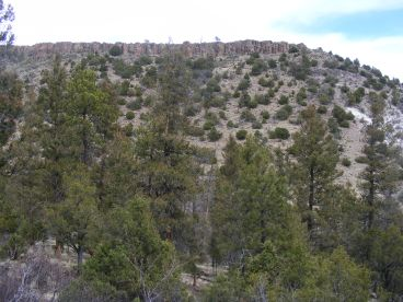 Looking up over Big Dry Gulch at the cap rock, probably a basalt or rhyolite, on the mesa above