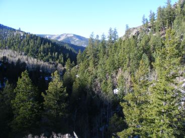 Looking south down Gold Creek
