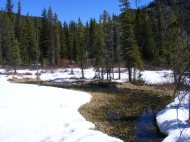 A bog on Gold Creek, mostly covered by snow
