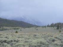 Mount Ouray in cloud