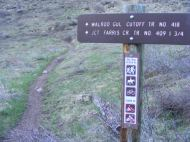 Walrod Gulch Cutoff Trail No. 418 at Walrod Gulch