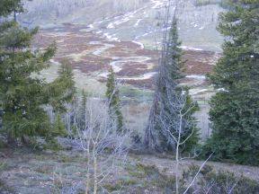 Looking down onto Cement Creek, hiking down the Warm Springs Trail No. 406