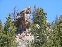 An outcropping with a snag on East Pass Creek