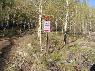 Bureau of Land Management Road 3115