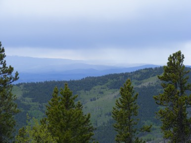Looking out from Gunnison National Forest Trail 610, towards Tomichi Creek