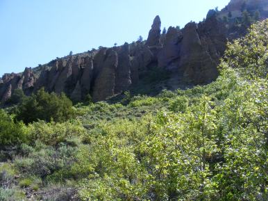 Chokecherries and hoodoos on East Elk Creek