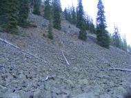 Talus along the Gold Creek Trail No. 427