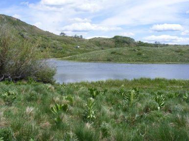 Looking across Big Alkali Lake