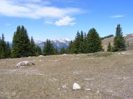 On a ridge of Cement Mountain, looking west towards Whetstone Mountain