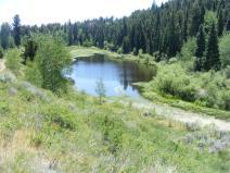 Cunningham Reservoir