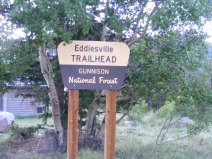 Signage for the Eddiesville Trailhead on the Gunnison National Forest; three different trails depart from this starting point