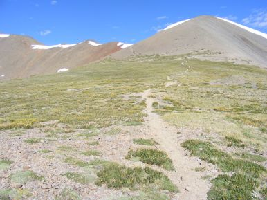 The Stewart Creek Trail No. 470 on the divide between Stewart and Cochetopa Creeks, about a mile away from San Luis Peak