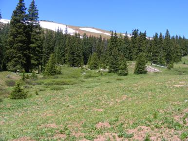 Summer in the Elk Mountains, a fine day