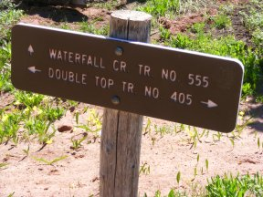 At the junction of the Double Top Trail No. 405 and Waterfall Trail No. 555