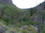 East Middle Creek in the Cochetopa Hills