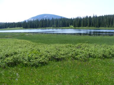Looking over the so-called Lily Pond, towards Carbon Peak