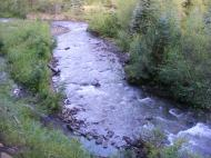 Coal Creek just upstream of Robinson Creek, in the West Elk Mountains of Colorado