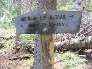 The fork of the Peter Creek Trail No. 856 and an unnumbered trail that may or may not be official but shows up on many maps