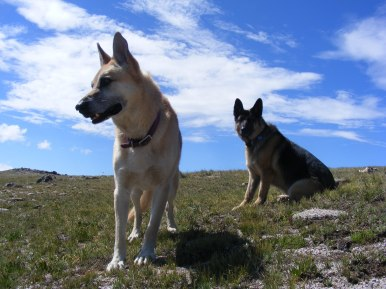 Draco and Leah on Mount Peck