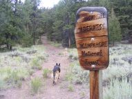 Leah on the Independence Gulch Trail No. 234 at the boundary of the Uncompahgre Wilderness