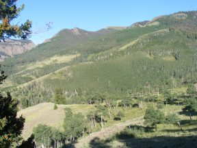 High up on Independence Gulch in the Uncompahgre Wilderness