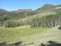 The San Juan Mountains in the vicinity of Independence Gulch in the Uncompahgre Wilderness