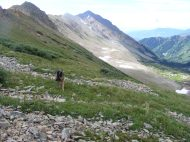 Leah nearing the unnamed pass between West Brush Creek (visible to the right) and Twin Lakes; Teocalli Mountain poking up behind the shepherd
