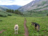 Draco and Leah on the Twin Lakes Trail No. 402