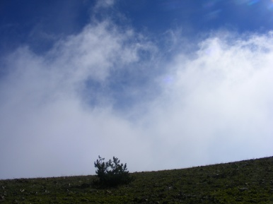 One last cloud sails over the rim of Carbon Peak