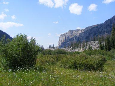 Looking west from Alexander Park in the Bridger Wilderness