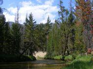 Roaring Fork above Roaring Fork Basin