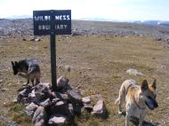 Just west of Three Waters Mountain, the Bridger Wilderness boundary, Leah and Draco happy to be out exploring