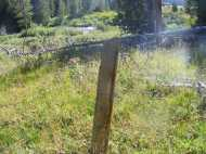 An old post at the old routing of Bridger-Teton National Forest Trail No. 94 in Roaring Fork