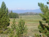 Looking across the Roaring Fork Basin towards the Gros Ventre Range